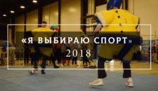Выставка «Я выбираю спорт!» — 2018