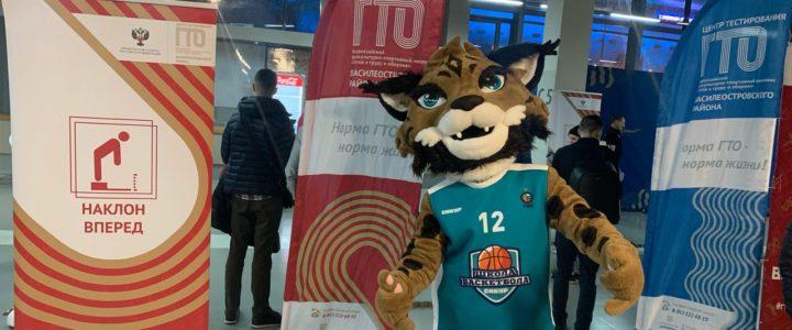 Приём нормативов ВФСК ГТО в рамках фан-променада болельщиков перед домашним матчем Баскетбольного клуба «Зенит»