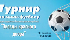 Турнир по мини-футболу среди подростков Василеостровского района!
